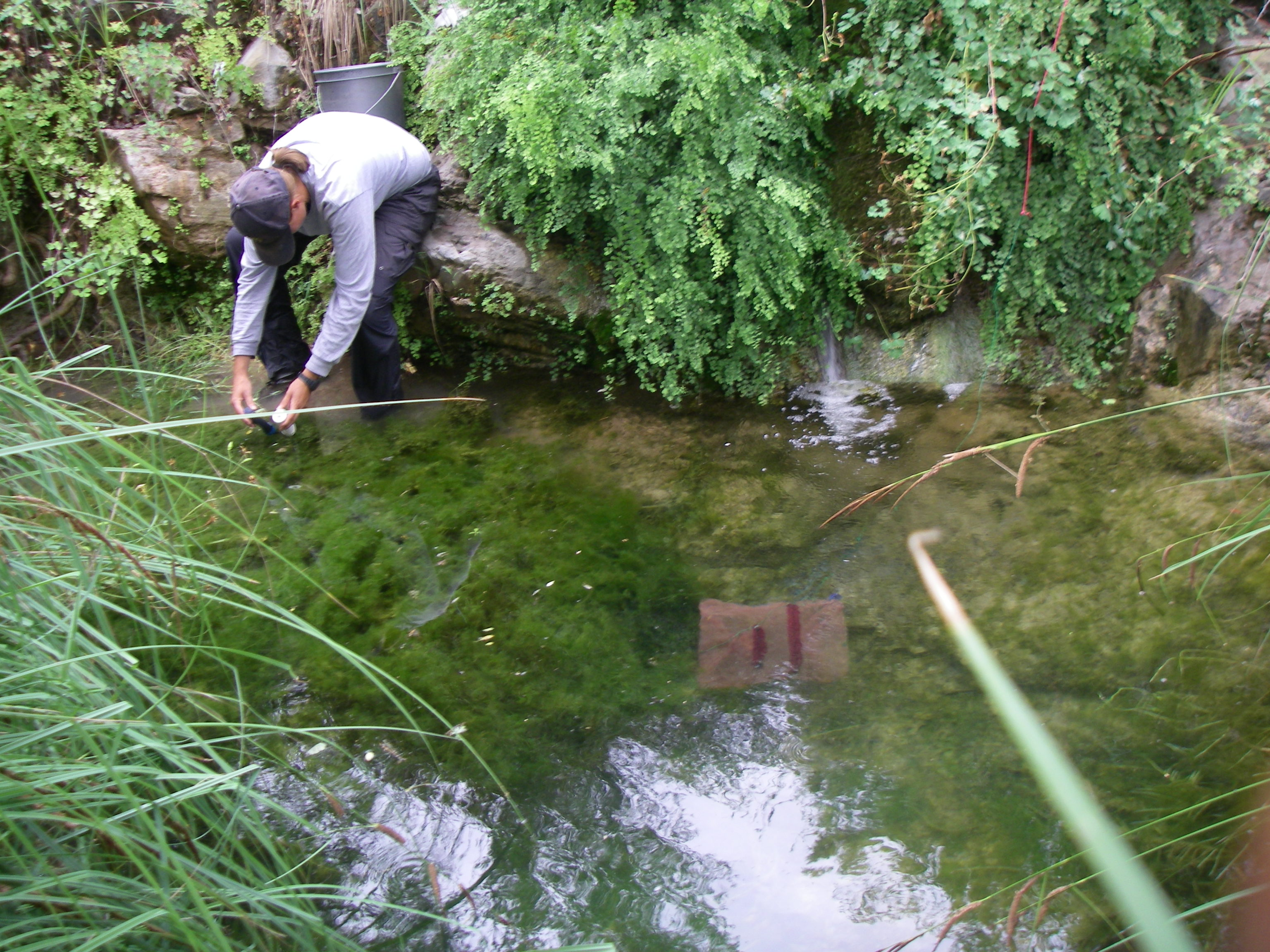 Littlenogalesspring20150715 2 in the current for Az game and fish phone number