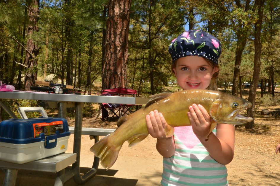 Featured story gila trout management in arizona in the for Gila river fishing